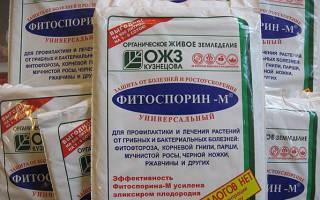 Фитоспорин для комнатных растений: инструкция по применению