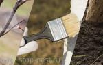 Обработка деревьев от вредителей и болезней